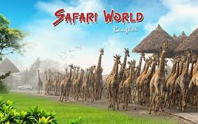 Safari World Travel Guide