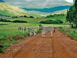 Top-Rated Destinations in South Africa
